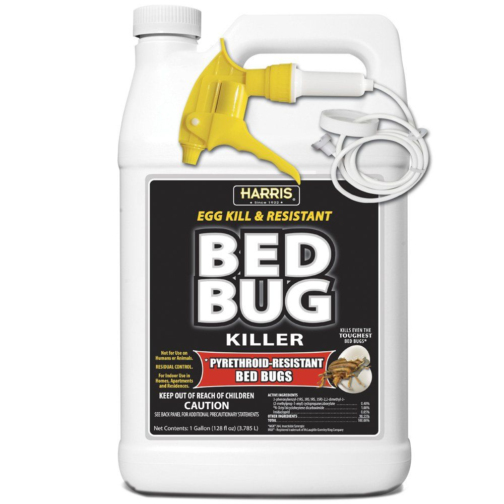 The 10 Best Bed Bug Sprays And Alternatives of 2019