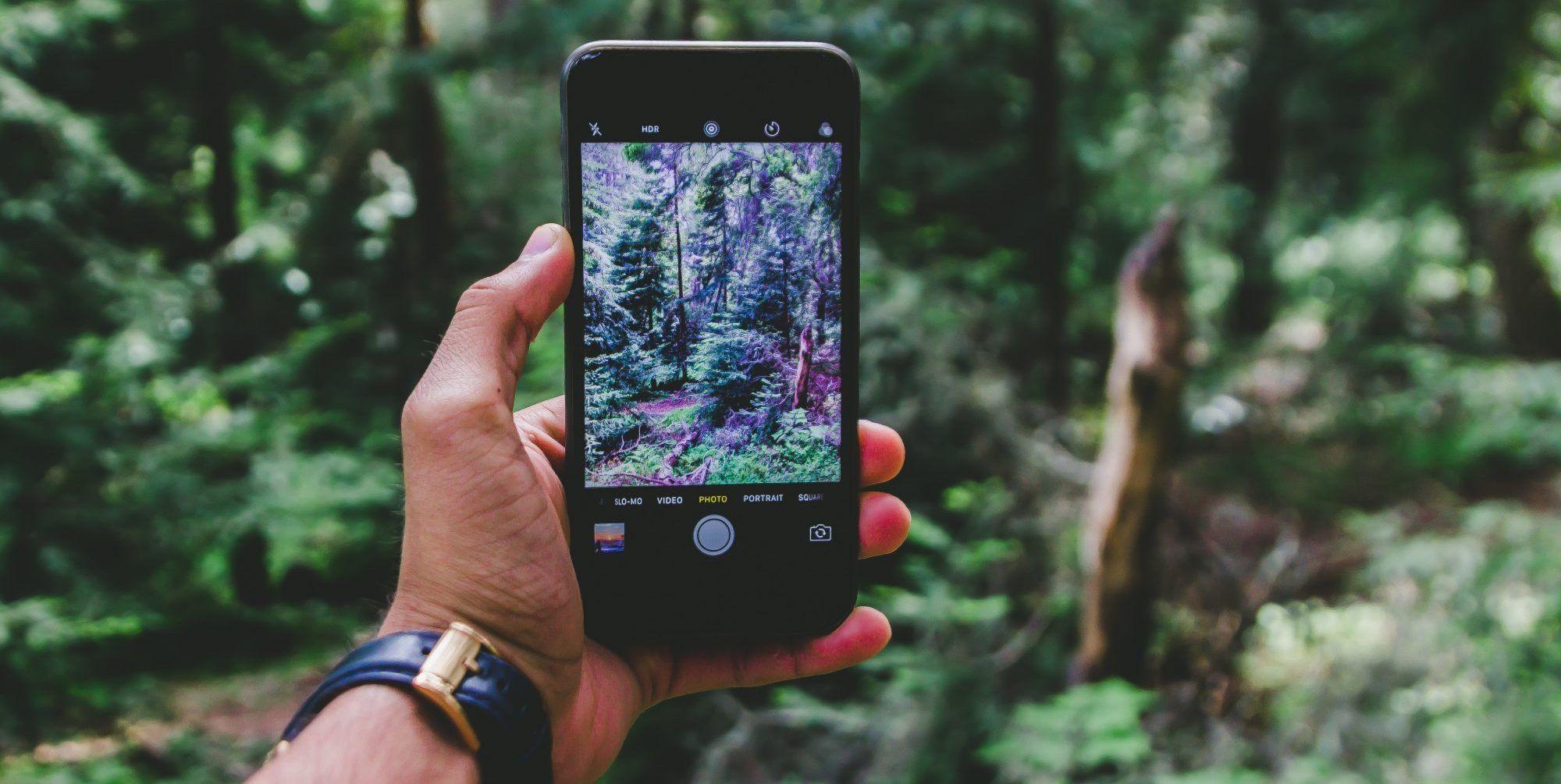 Understanding the Best Camera Phones | ReviewThis